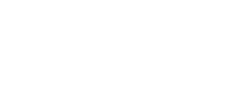 Zimmer & Co